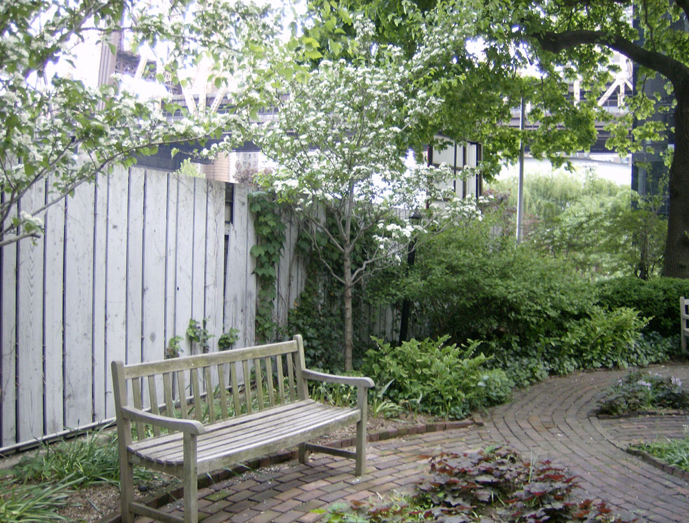 FAC_side-garden-with-bench